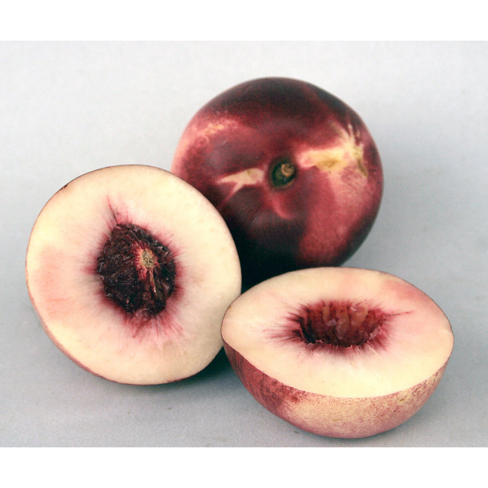 Load image into Gallery viewer, Nectarines - White