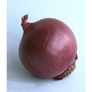Load image into Gallery viewer, Onions - Salad - Large