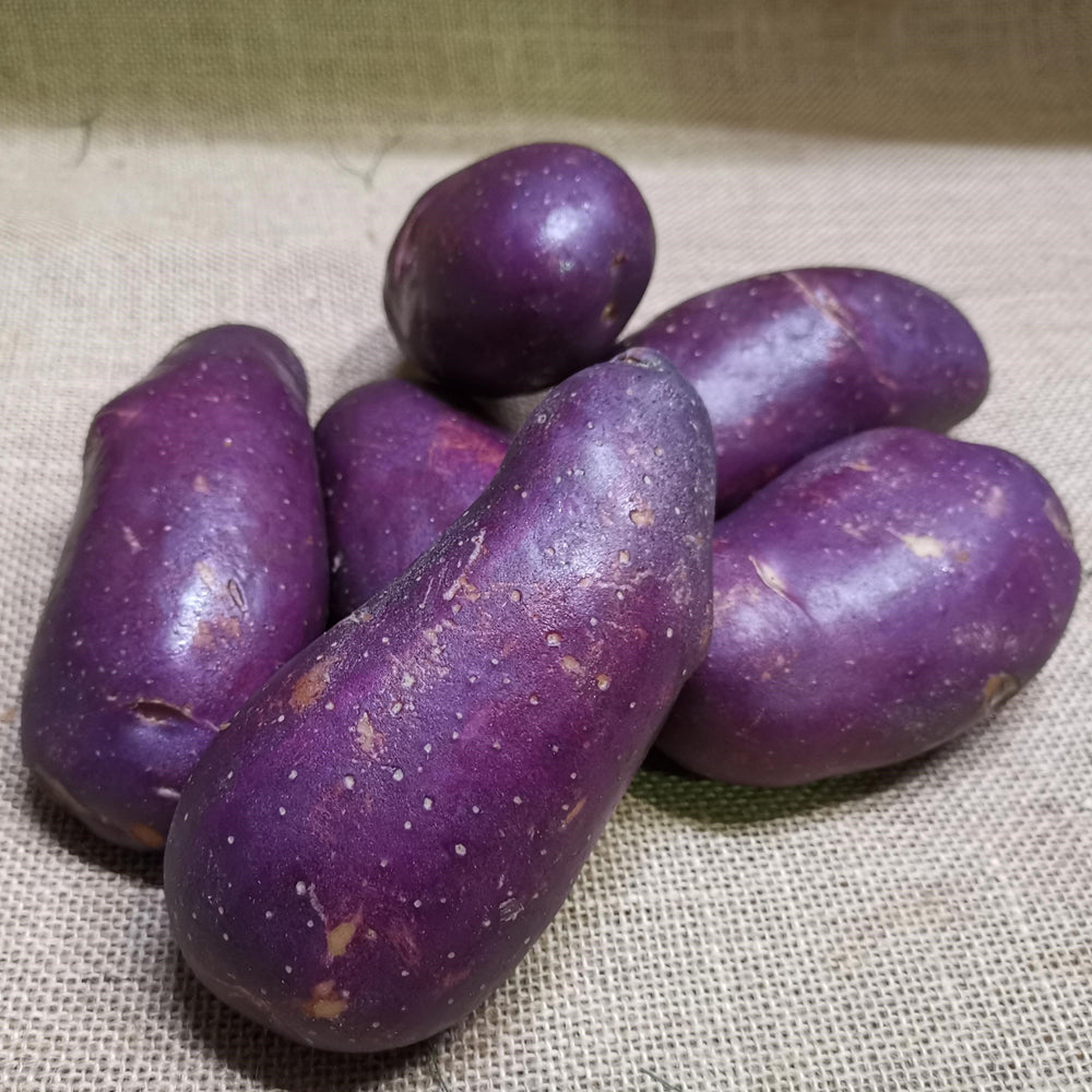 Potatoes - Royal Blue