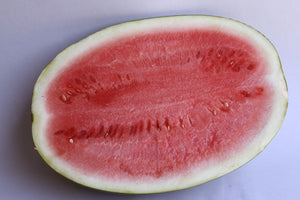 Watermelon - Seedless