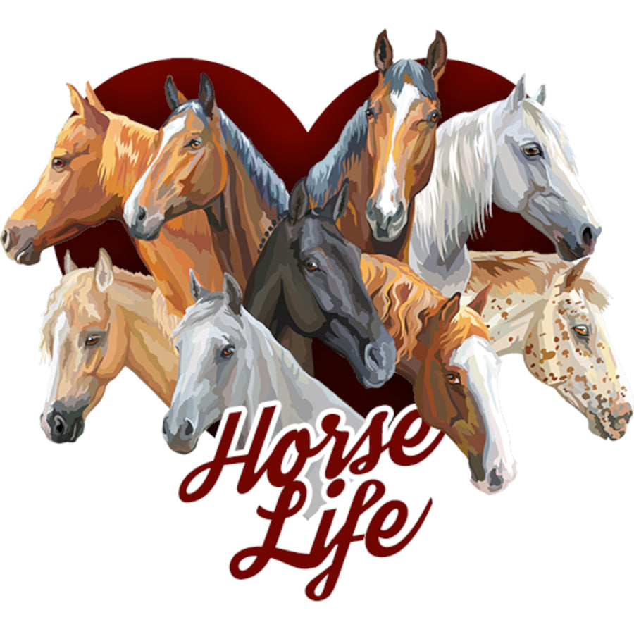 Horse Life - Ladies Relaxed Fit Tee - Graphic Tees Australia