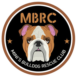 Mini's Bulldog Rescue Club - Ladies Relaxed Fit Tee