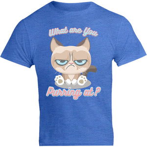 What Are You Purring At? - Unisex Tee - Graphic Tees Australia