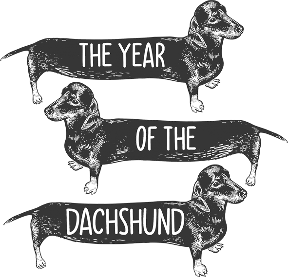 Year Of The Dachshund - Ladies Relaxed Fit Tee - Graphic Tees Australia