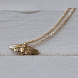 Small 14k gold Moth necklace