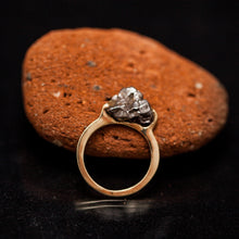 Load image into Gallery viewer, Gold meteorite standing ring