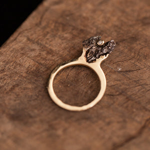 Meteorite standing ring with a diamond set
