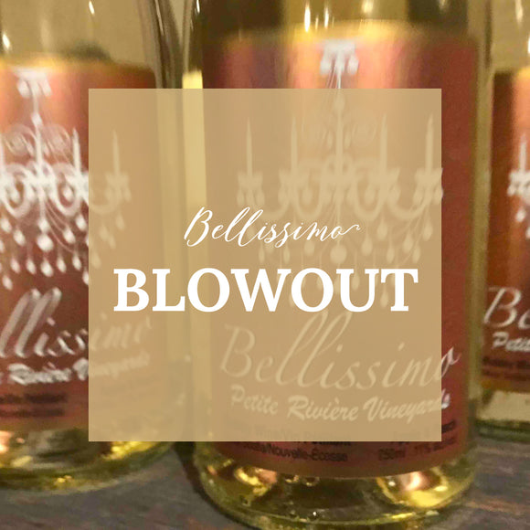 Bellissimo Blowout Special – Case of 12 – FLASH SALE