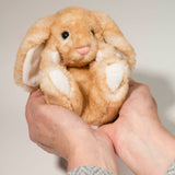 Lil' Handful Bunny, Multiple Colors