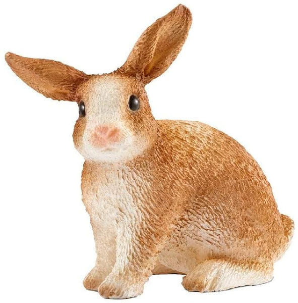 North America Rabbit