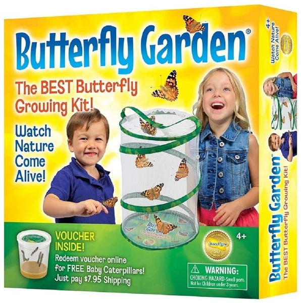 Butterfly Growing Kit (with Caterpillar Voucher)
