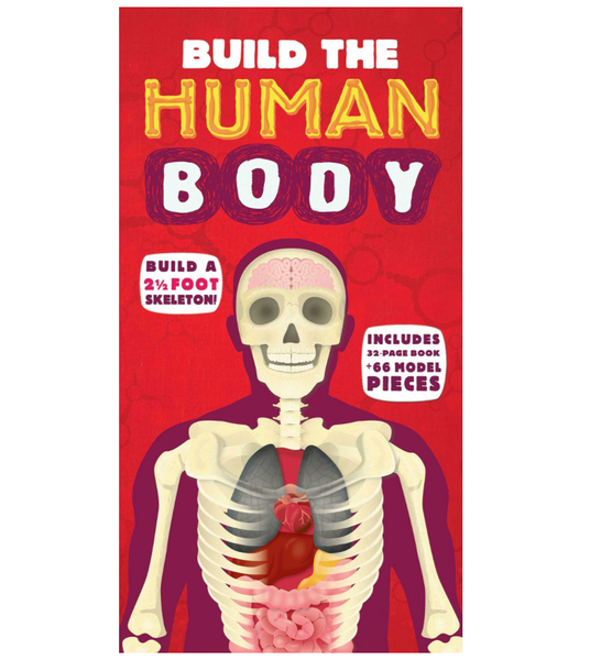Build the Human Body: Book and Activity