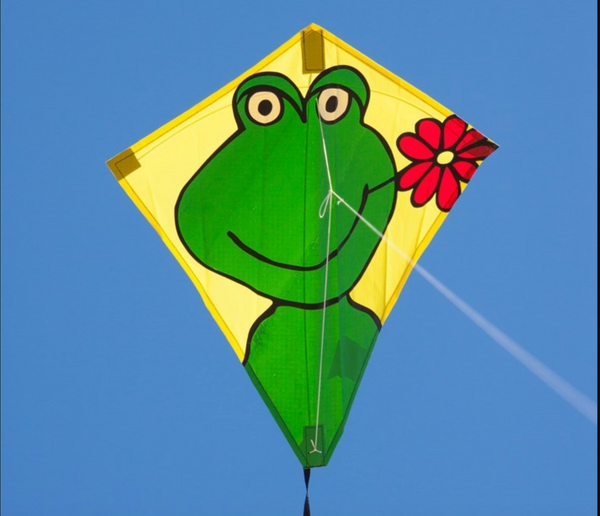 "Eco Eddy Happy Froggy 20"" Kite"