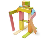 Tegu 24 Piece Magnetic Wooden Block Set, Tints