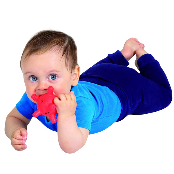 Edushape Gummyball Teether