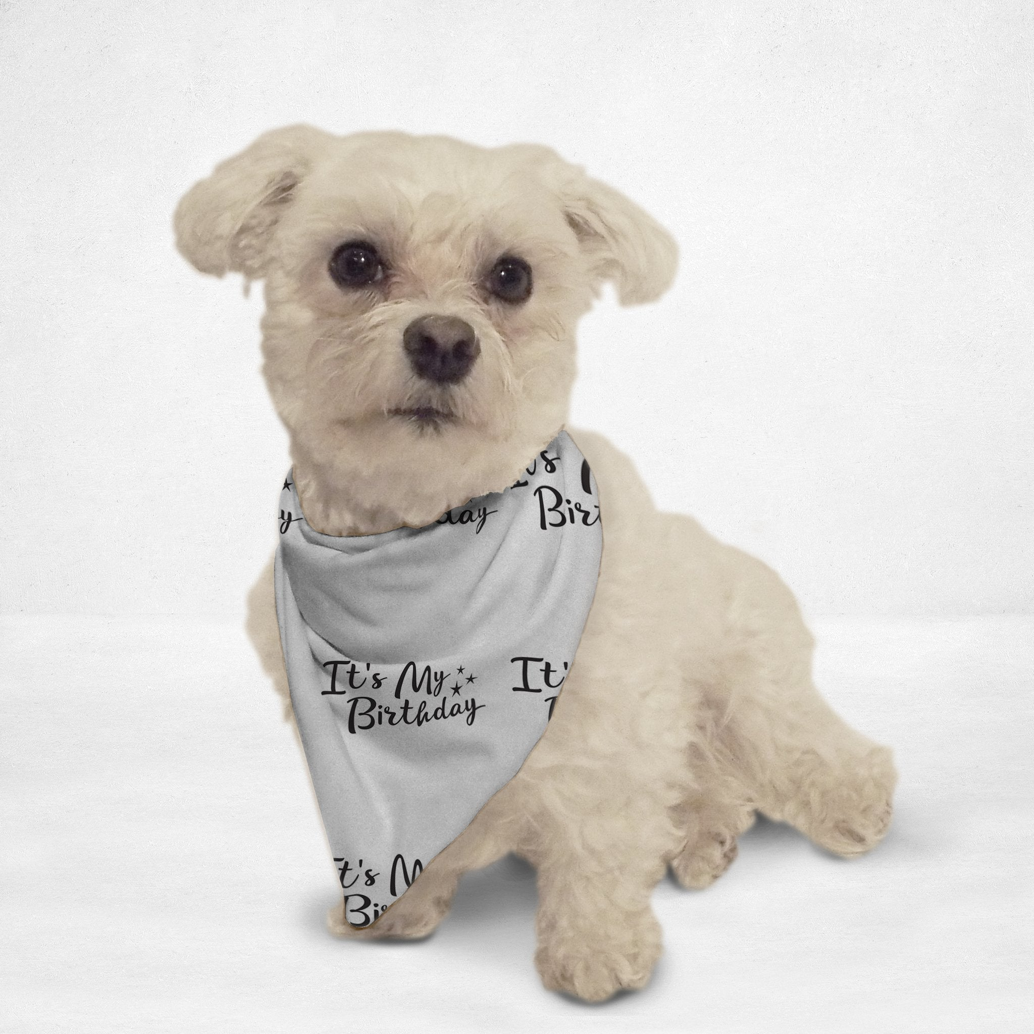 'It's My Birthday' Pet Bandana