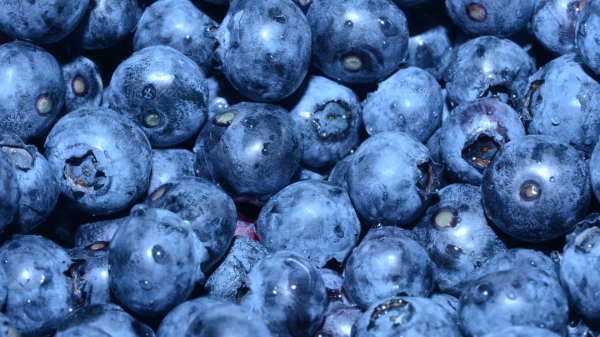 Organic Blueberries, 3 Baskets for $3 Off!