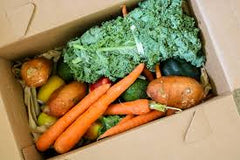 fresh vegetables in a cardboard delivery box