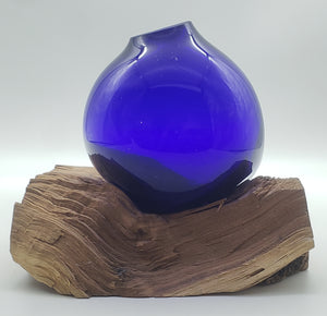 Cobalt Blue in Cedar