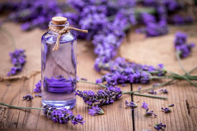 lavender essential oil for stress