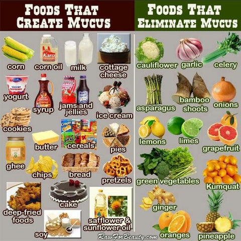 foods that create mucus