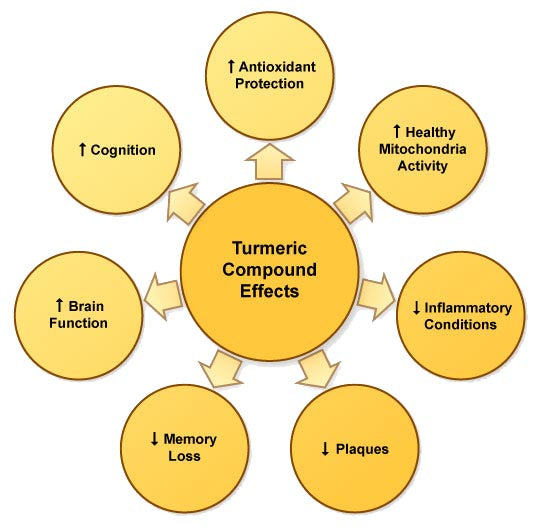 turmeric benefits chart