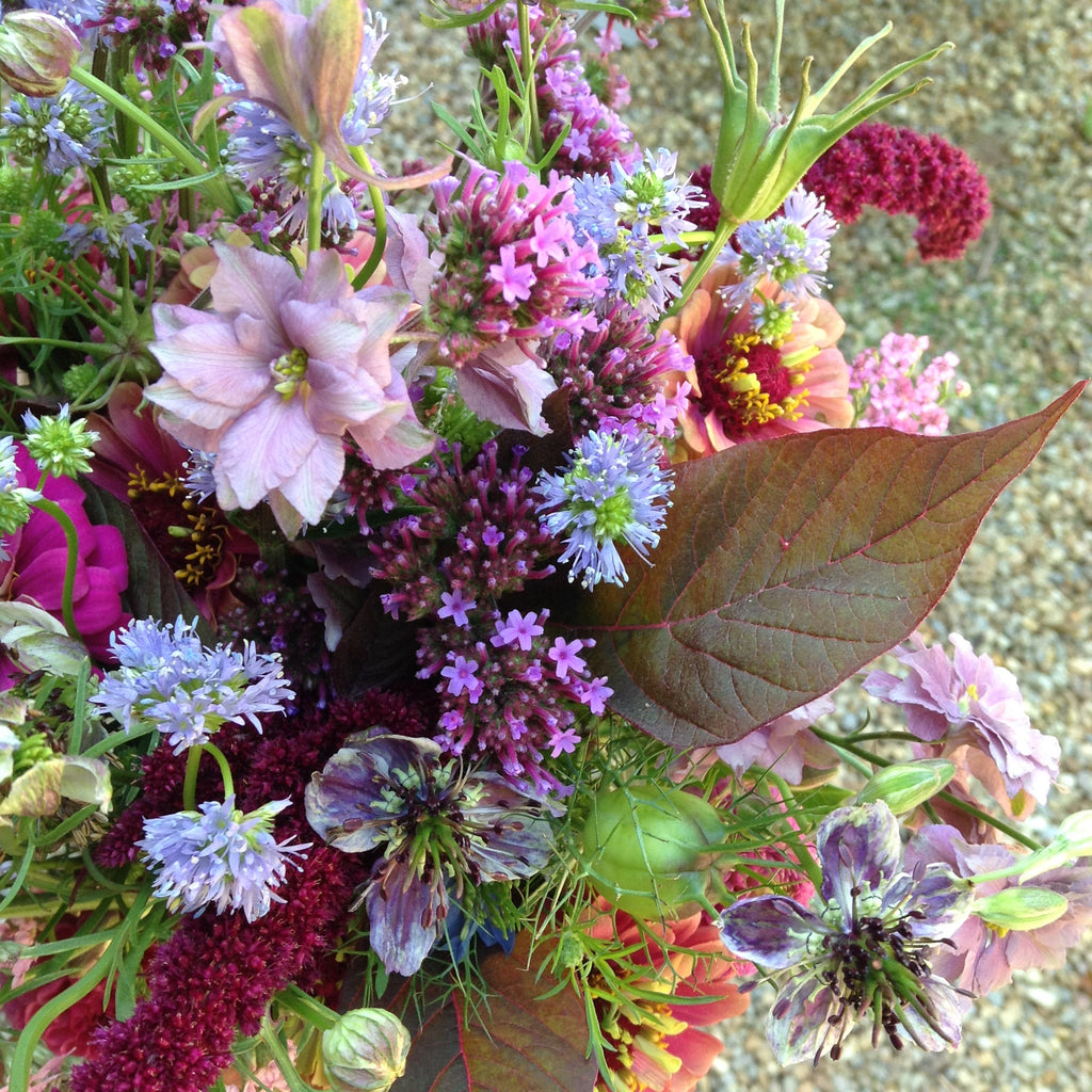 Flower CSA Membership - 5 week