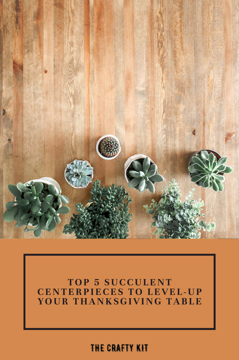 Top 5 Succulent Centerpieces To Level-Up Your Thanksgiving Table