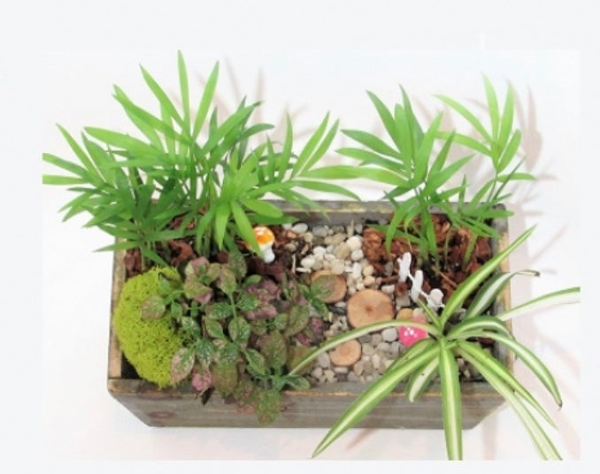 Tropical Rectangle Wooden Planter