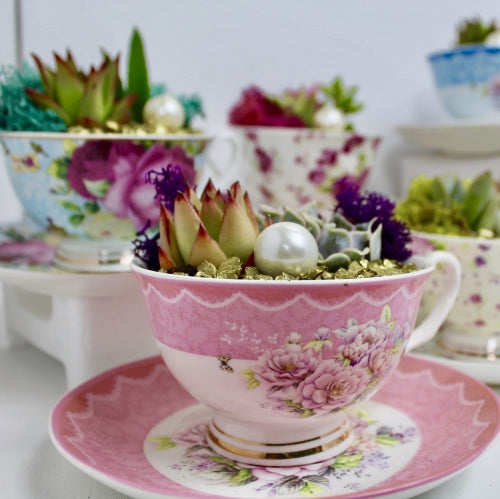 Teacup Planter Set of 2 kit