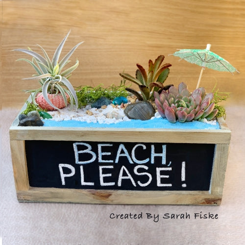 Beach Chalkboard Planter Kit
