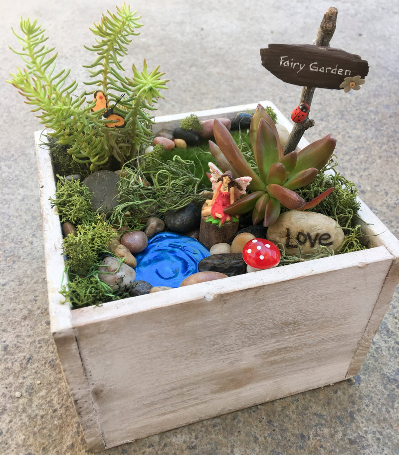 Fairy Garden Kit for PE