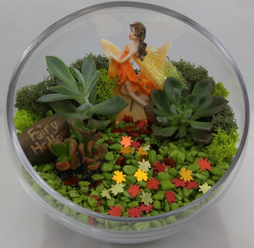 DIY Fairy Slope Bowl Planter Kit