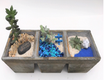 DIY Beach Split Planter Kit