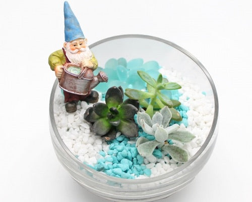 Gnome Planter Kit