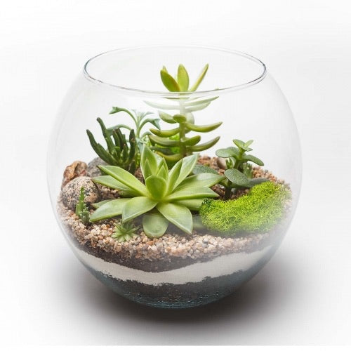 Nature Planter Kit-SCVCC
