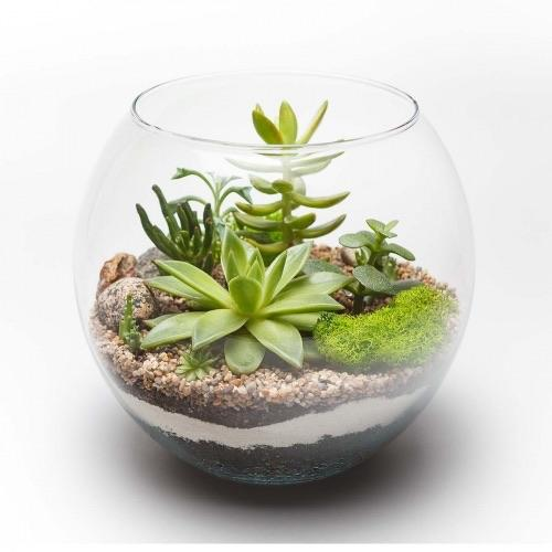Nature Planter-Linked In