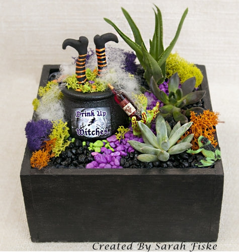 DIY Witches Brew Planter Kit