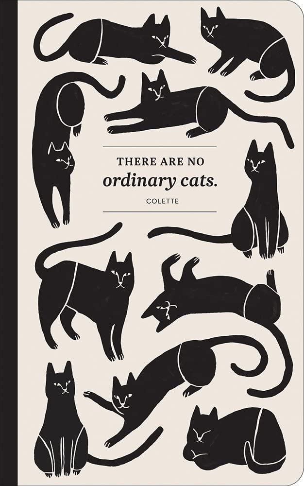 There Are No Ordinary Cats