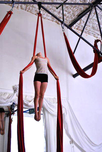 Teen/Tween Mixed Beginner Aerial Class