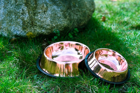 Copper CuBowl
