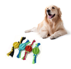 Chew Ball With Rope - The Pet Supply