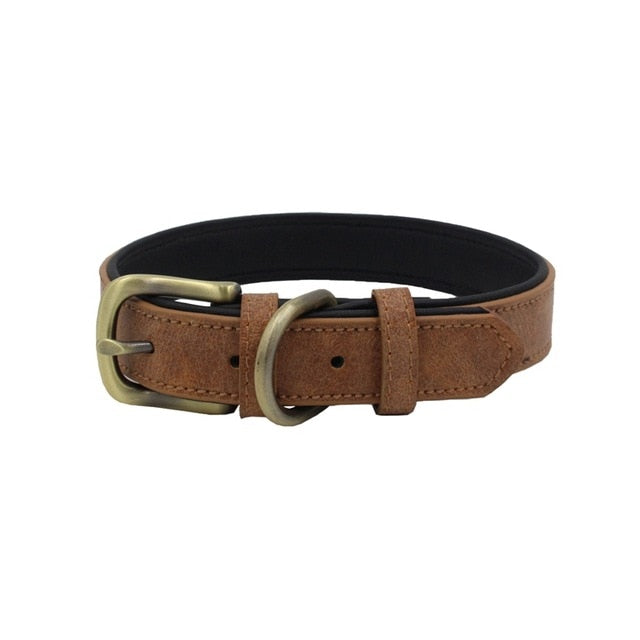 Matt Colour Leather Collar - The Pet Supply