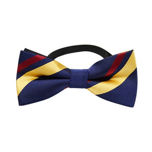Classic Stripe Dog Bow Tie Collar - The Pet Supply
