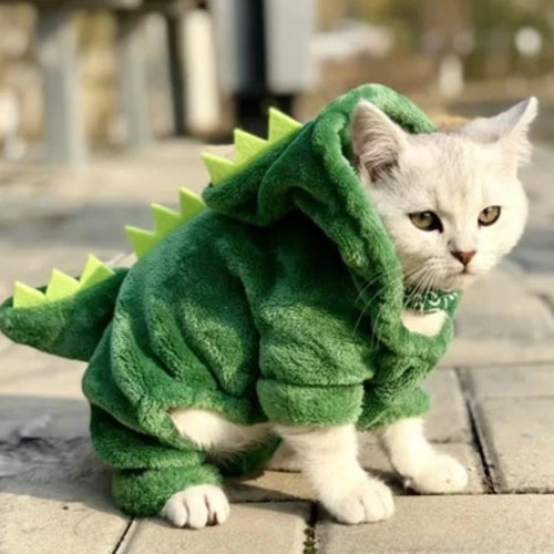 Dinosaur Coat - The Pet Supply