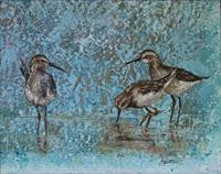 'SEA BIRDS' BY SUSAN NUTTALL