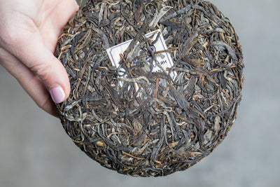 The Mysteries of Pu-erh