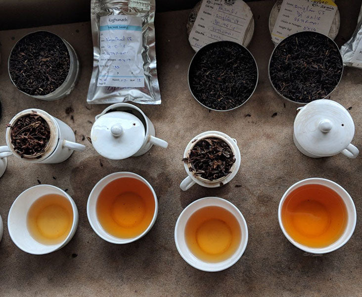 Darjeeling Tea Sampling