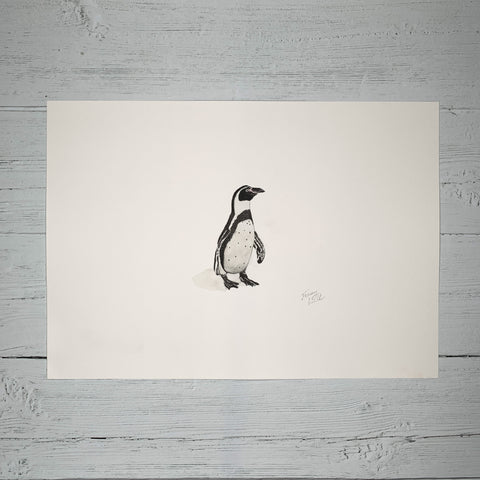 Humboldt Penguin - Original (1 of 1)