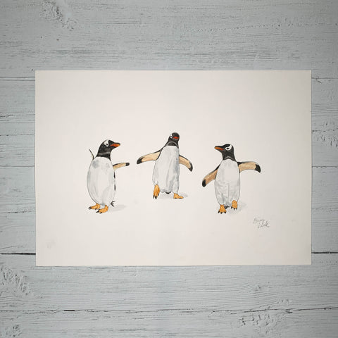 Gentoo Penguin Party - Original (1 of 1)